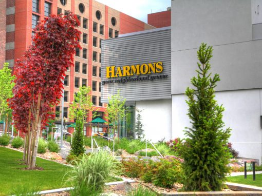 City Creek – Harmons